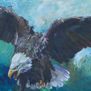 Bald Eagle - By Canadian Artist Shannon Ford